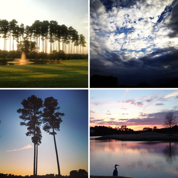 golf-course-sunsets