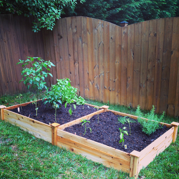 simple-raised-bed