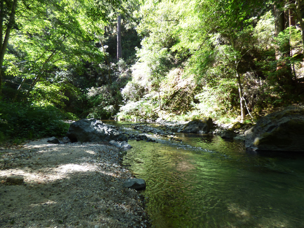 big-sur-river