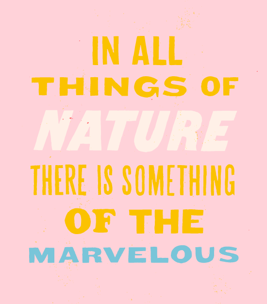 marvelous-quote